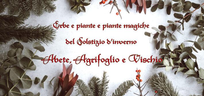 Erbe Solstizio Abete Agrifoglio Vischio